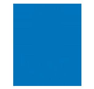 du Plessis Auction Gallery